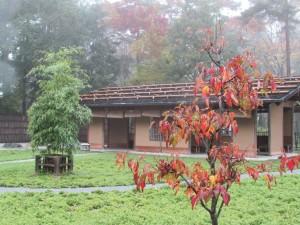 箬庵と紅葉